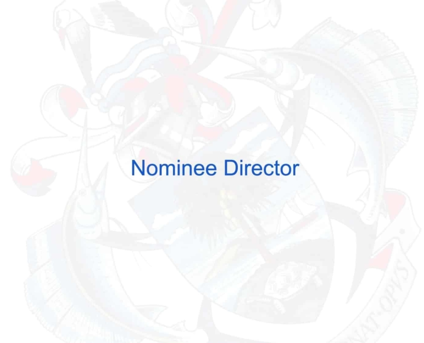 Por qué es importante un Director Nominado