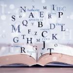 塞舌尔离岸IBC的词汇、常见问题和词典
